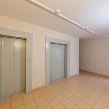 ЖК Невская Звезда, отделка, квартиры с отделкой, квартиры, комната, описание, холл,