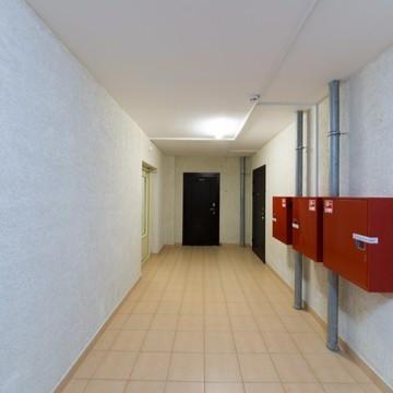 ЖК Невская Звезда, отделка, квартиры с отделкой, квартиры, комната, описание, холл, новостройка,